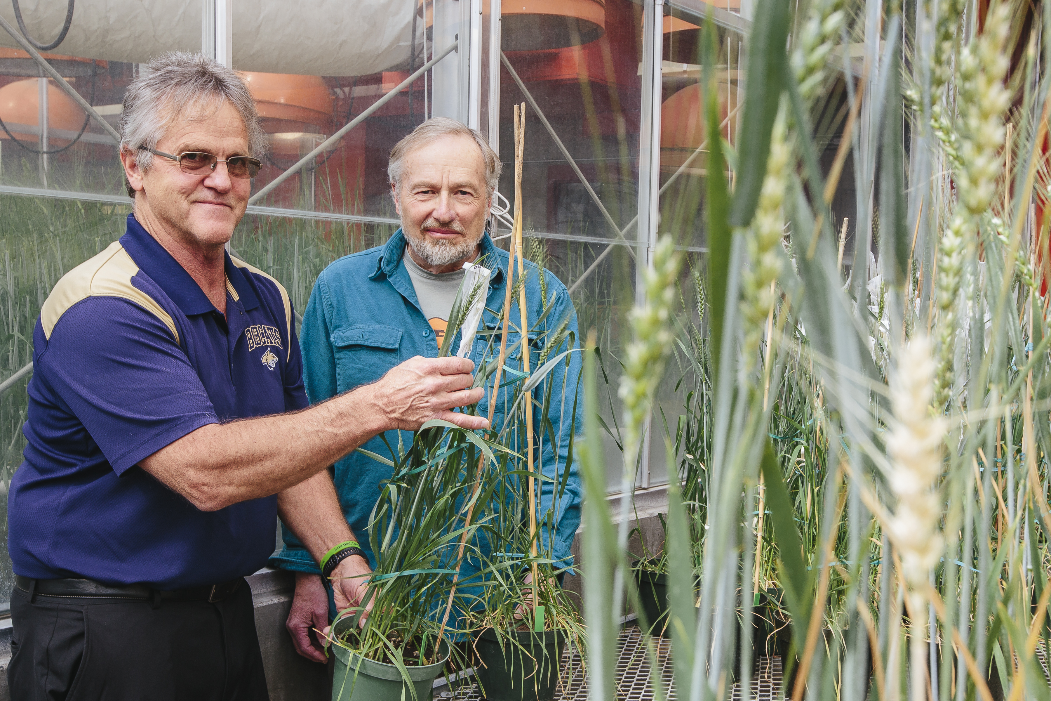 two faculty in greenhouse lab