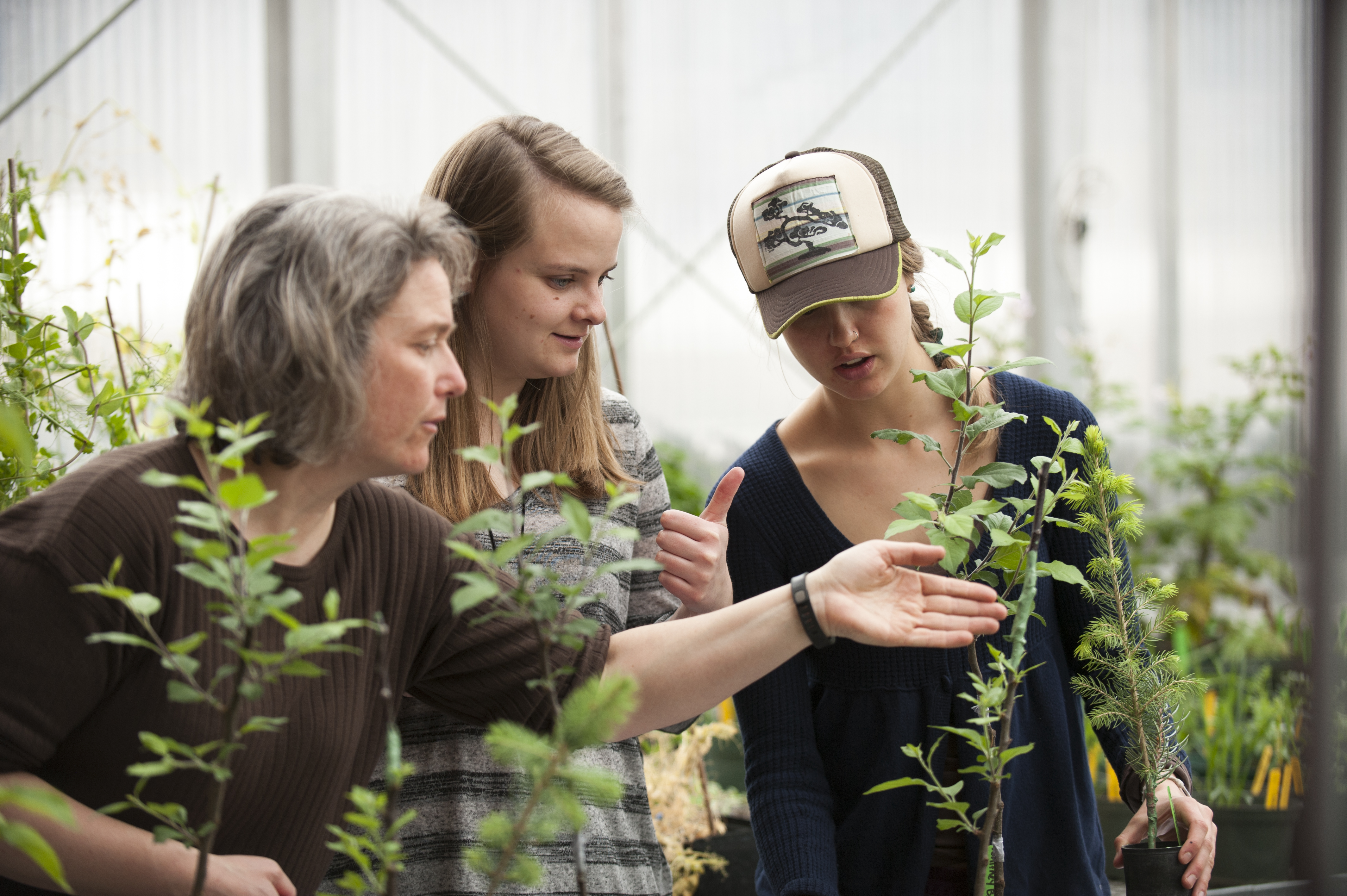 students looking at plants in a greenhouse